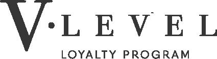 V level logo